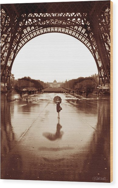 The Other Face Of Paris Wood Print