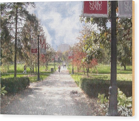 The Oval At Ohio State Wood Print