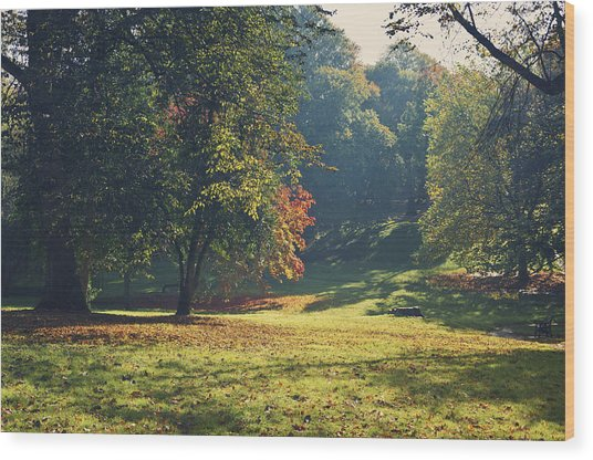 The Park In Autumn Wood Print