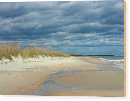 The Perfect Beach Shot Wood Print by Lisa Campbell