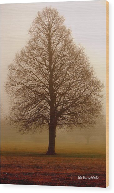The Perfect Tree Wood Print