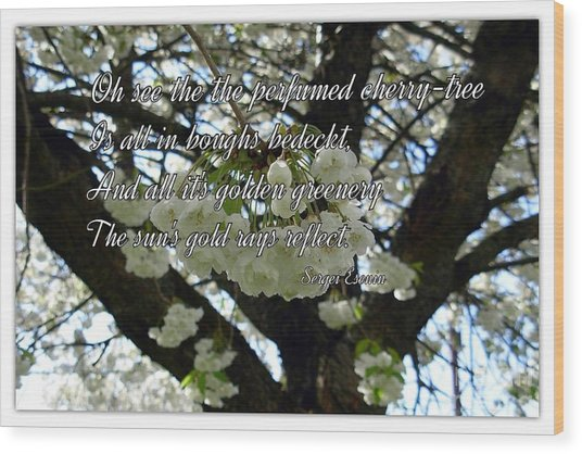 The Perfumed Cherry Tree 2 Wood Print