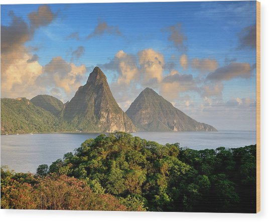 The Pitons - Saint Lucia Wood Print by Brendan Reals