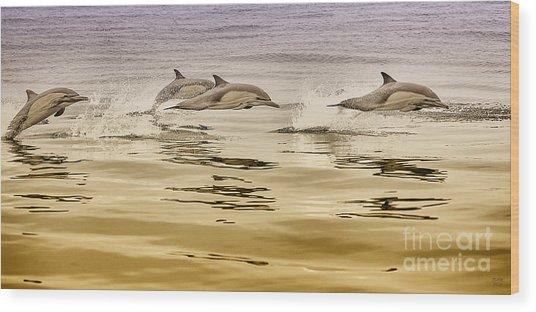 Dolphin Canvas Print, Photographic Print, Art Print, Framed Print, Greeting Card, Iphone Case, Wood Print