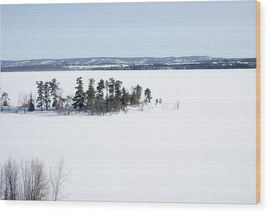 The Point In Winter Pinheys Point Ontario Wood Print