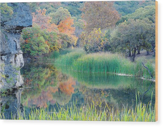 The Pond At Lost Maples State Natural Area - Texas Hill Country Wood Print