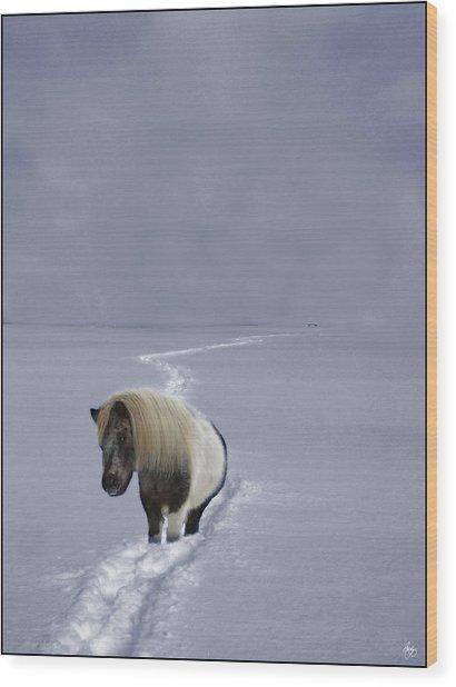 The Ponys Trail Wood Print