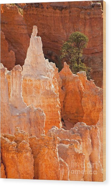 The Pope Sunrise Point Bryce Canyon National Park Wood Print