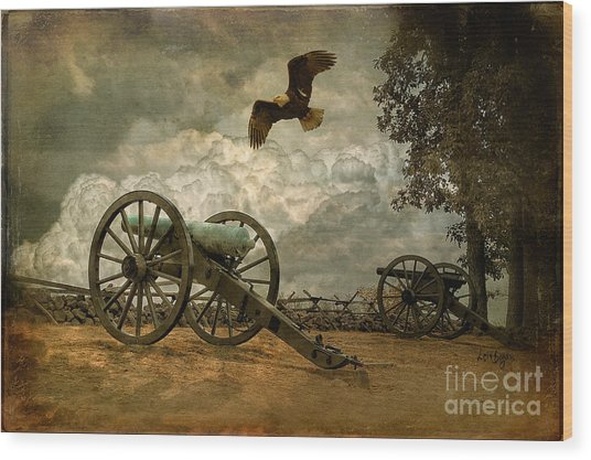 Wood Print featuring the photograph The Price Of Freedom by Lois Bryan