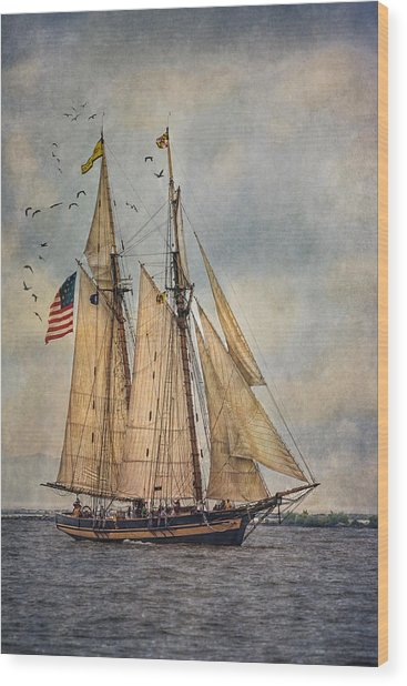The Pride Of Baltimore II Wood Print