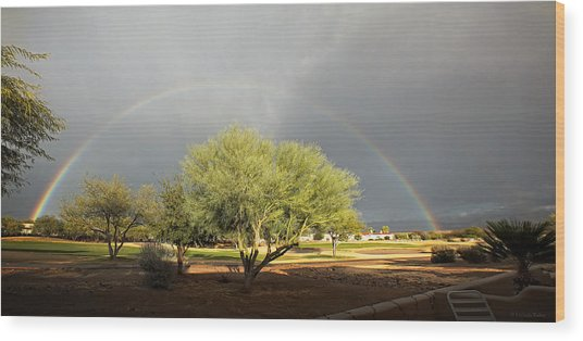 The Rain And The Rainbow Wood Print