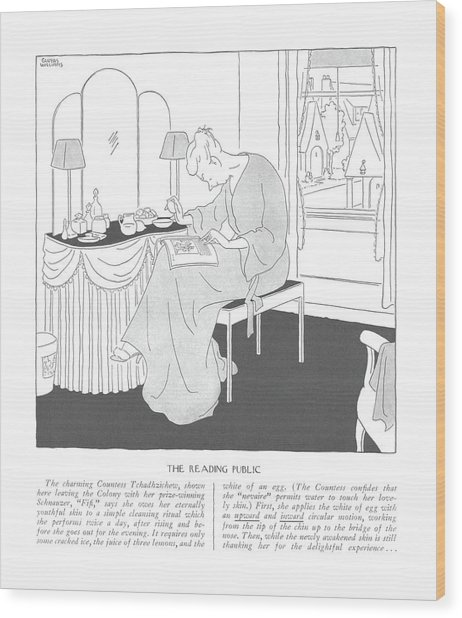 The Reading Public  The Charming Countess Wood Print