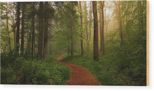 The Red Path. Wood Print by Leif L?ndal