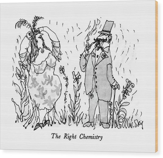 The Right Chemistry Wood Print