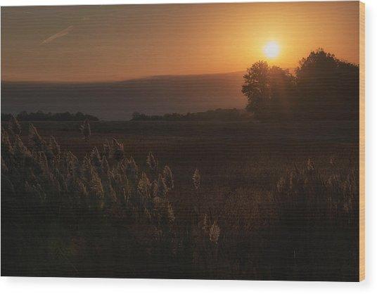 The Rising Wood Print by Darlene Bushue