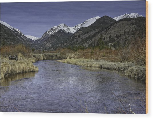 The River Flows Wood Print by Tom Wilbert