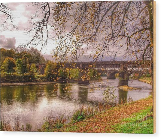 The Riverside At Avenham Park Wood Print