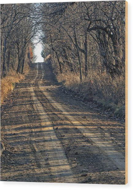 The Road Less Traveled Wood Print by Kevin Anderson