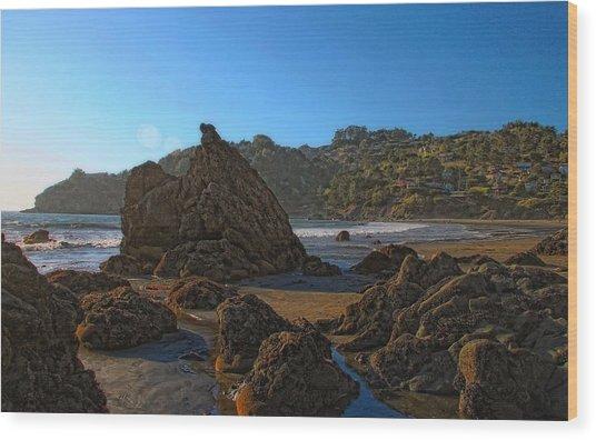 The Rocky Coast Iv Wood Print