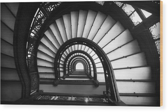 The Rookery Staircase In Black And White Wood Print