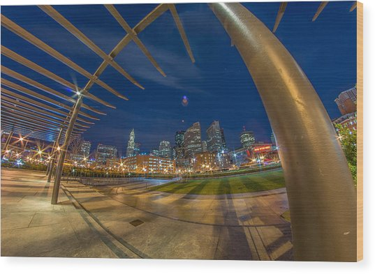 The Rose Kennedy Greenway Boston Ma Wood Print