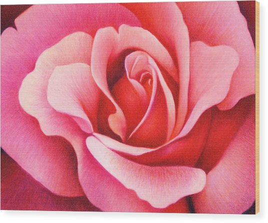 The Rose Wood Print
