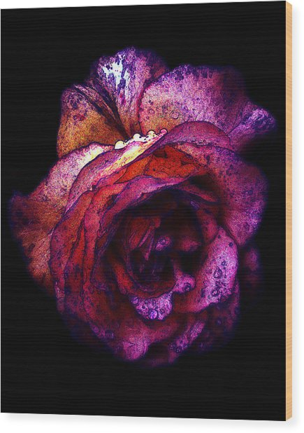 The Royal Rose Wood Print