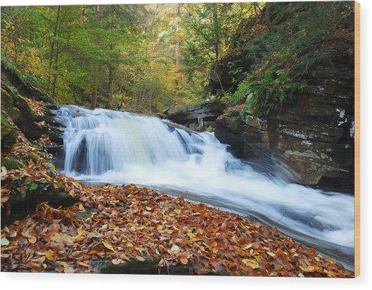 The Rushing Waterfall Wood Print