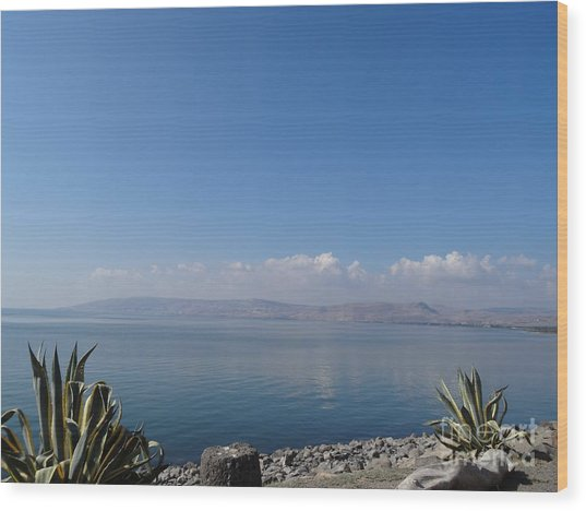 The Sea Of Galilee At Capernaum Wood Print
