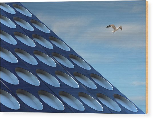 The Seagull Wood Print by Henk Van Maastricht