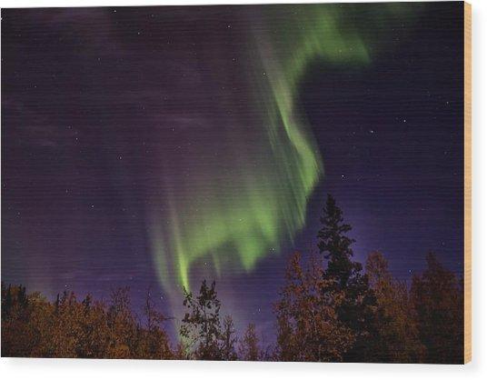 The September Aurora Fairbanks Alaska Wood Print