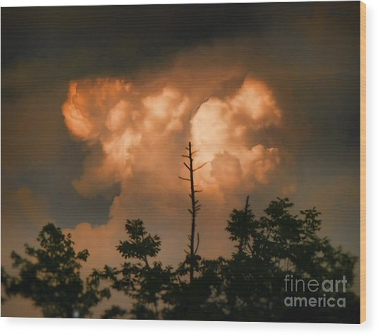 The Sky Above Wood Print