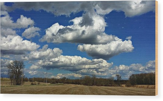 The Sky Is The Limit Wood Print by Joel Rams