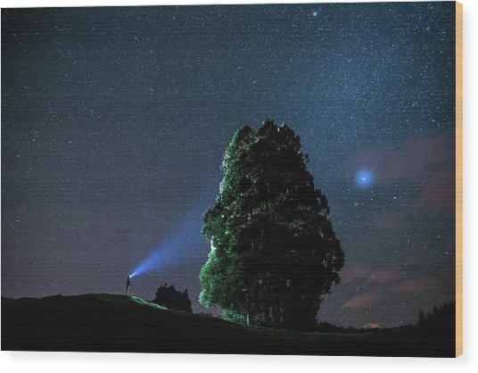 The Sky Painter Wood Print