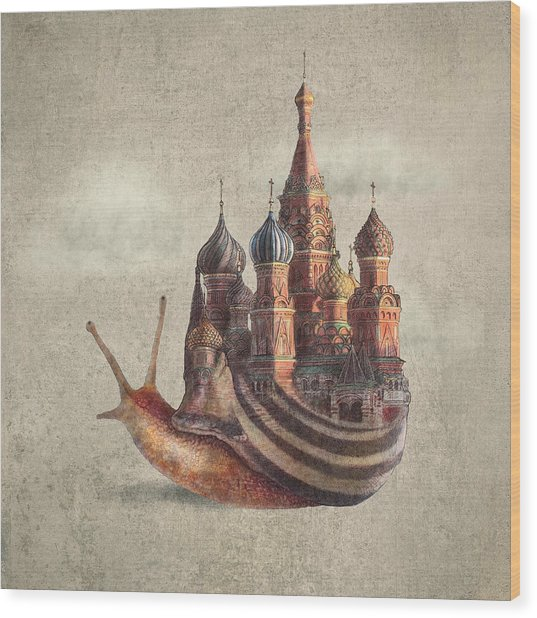 The Snail's Daydream Wood Print