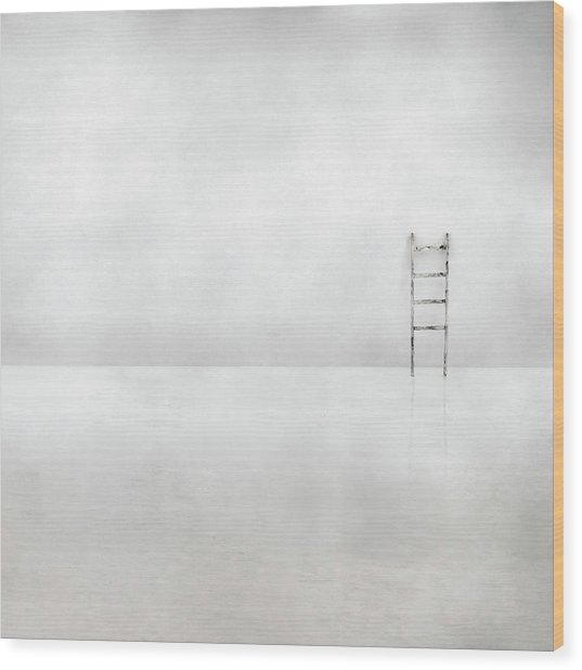 The Social Ladder Wood Print by Gilbert Claes