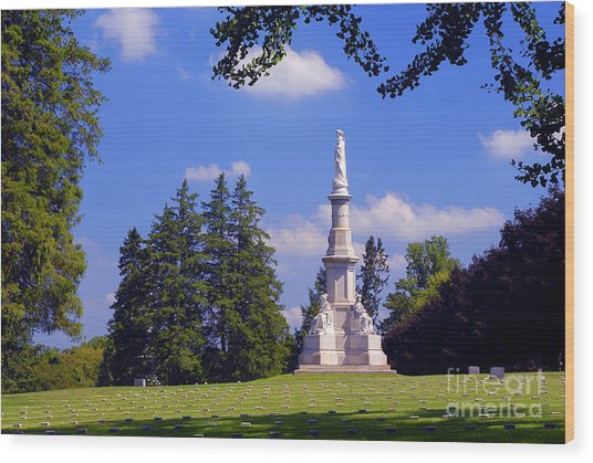 The Soldiers Monument Wood Print