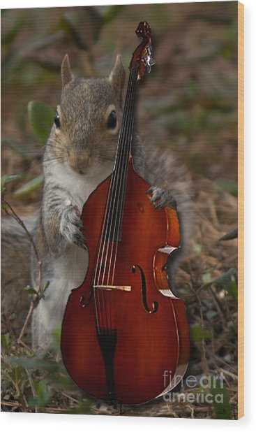 The Squirrel And His Double Bass Wood Print