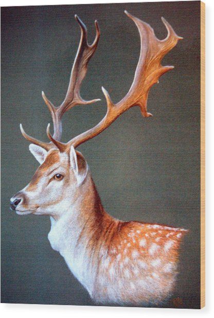 The Stag Wood Print