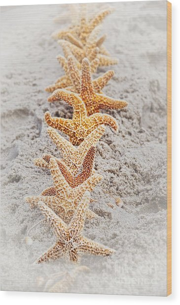 The Starfish Line Dance Wood Print