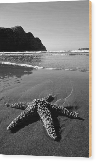 The Starfish Wood Print