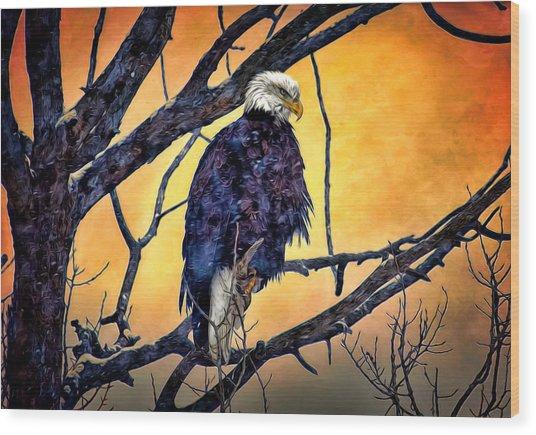 The Staring Eagle Wood Print