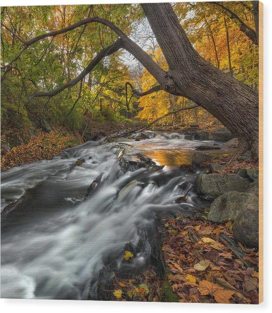The Still River Square Wood Print