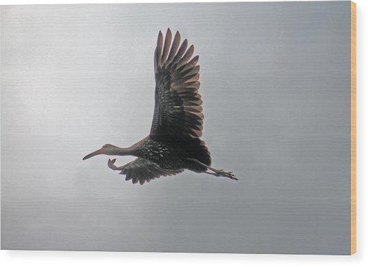 The Stork Wood Print
