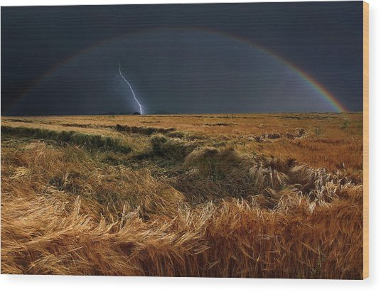 The Storm Is Over Wood Print