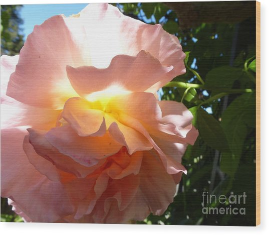 The Sun Within Wood Print by Anat Gerards