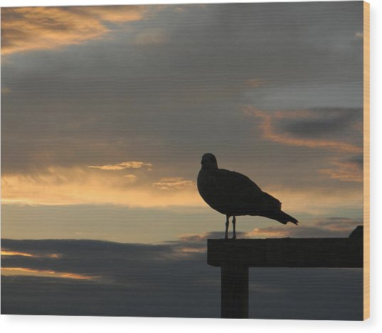 The Sunset Perch Wood Print