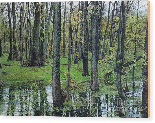 The Swamp Wood Print