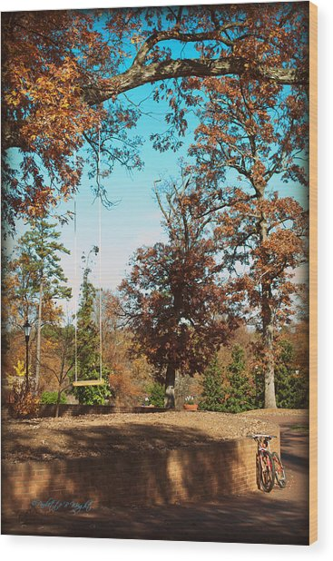 The Swing With Red Bicycle - Davidson College Wood Print