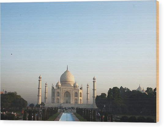 The Taj. Early Morning Wood Print